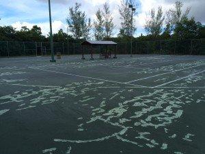 Tennis Court 2015 003